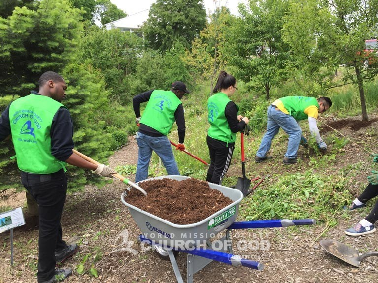 Dodge Park, cleanup, MA, Massachusetts, Boston, Springfield, volunteer, volunteerism, trash, garbage, environmental protection, environment, campaign, Worcester, tree initiative