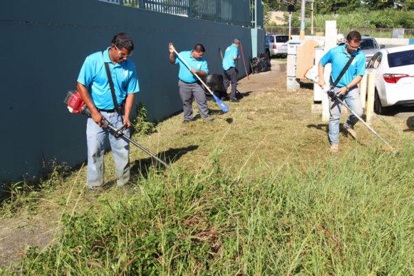 ASEZ, wmscog, world mission society church of god, PR, Puerto Rico, Guaynabo, cleanup, reduce crime, volunteerism, university